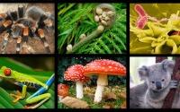 Изучи результаты ЕГЭ по биологии 2016
