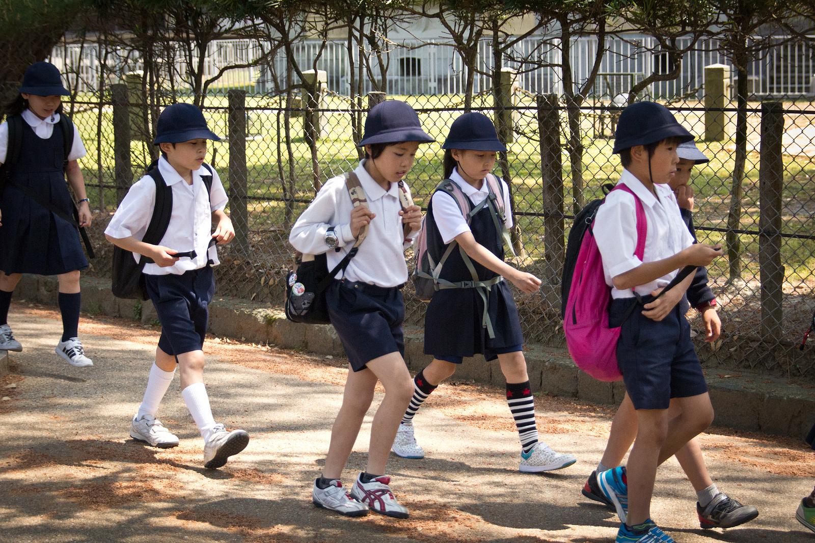 Необычные уроки в зарубежных школах