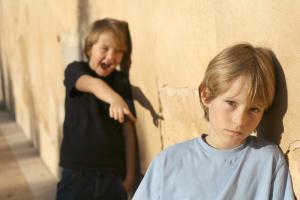 Как защититься от задиры в классе